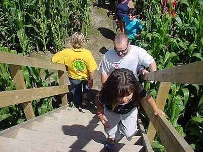 The Amazing Maze 'n Maize